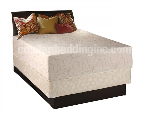 Comfort Bedding Visco Touch 12 Inch Tight Top Medium Plush Single Sided Twin Mattress and Box M712-2